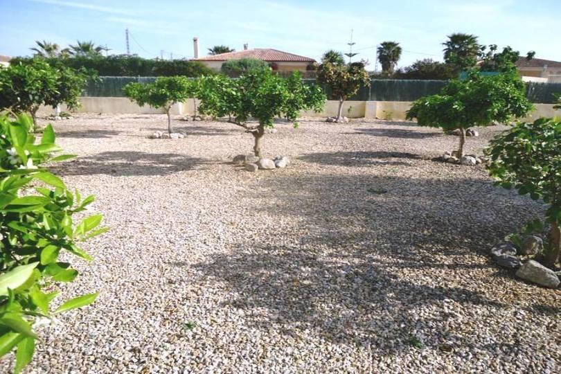 Catral,Alicante,España,3 Habitaciones Habitaciones,2 BañosBaños,Fincas-Villas,2262