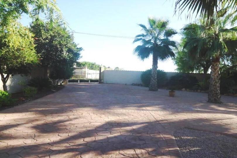 Catral,Alicante,España,4 Habitaciones Habitaciones,4 BañosBaños,Fincas-Villas,2267