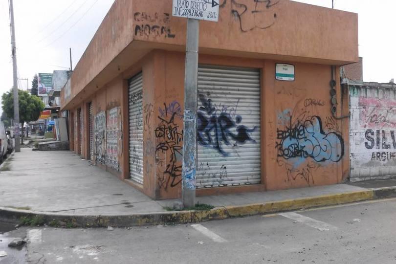Puebla,Puebla,México,1 BañoBaños,Locales,Camino Real a Manzanilla esquina con Nogal,2380