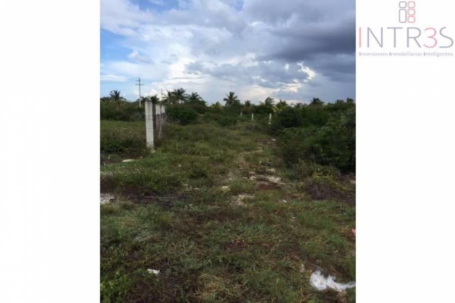 Chicxulub Puerto,Yucatán,México,Lotes-Terrenos,progreso,2948