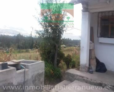 TABACUNDO,PICHINCHA,Ecuador,2 Bedrooms Bedrooms,1 BañoBathrooms,Casas,3567