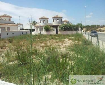 Guardamar del Segura,Alicante,España,Lotes-Terrenos,3753