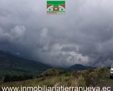 """Propiedad de 12 hectáreas ubicada en Cayambe en el sector de Turupamba apta para cabañas con una altitud de 3600msnm tiene ojos de agua. A 4000 por hectárea   Con una vista espectacular al Nevado Cayambe y a sus alrededores.  PRECIO: 60.000 NEGOCIABLE Para mayor información y ventas visítanos en nuestra oficina:  INMOBILIARIA TIERRA NUEVA Dirección Cayambe, Av. Natalia Jarrín y Bolívar – Paseo Comercial """"El Redondel"""" Local #20  Teléfonos: fijo: (02) 2111 9 Whatsapp:  593980247008 https://chat.whatsapp.com/HfA6fXdTBcq7LDQ4iW1esD Email: cayambe@inmobiliariatierranueva.ec Website: www.inmobiliariatierranueva.ec CAYAMBE–ECUADOR"""