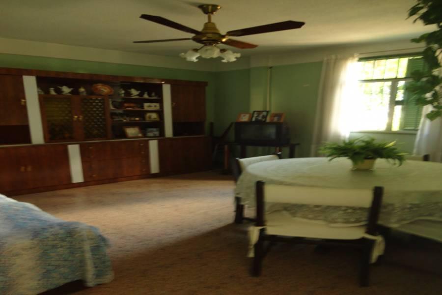 Flores,Capital Federal,2 Habitaciones Habitaciones,1 BañoBaños,Departamentos,CRISOSTOMO ALVAREZ,1013