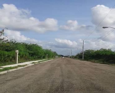 Conkal,Yucatán,Mexico,Lotes-Terrenos,4529