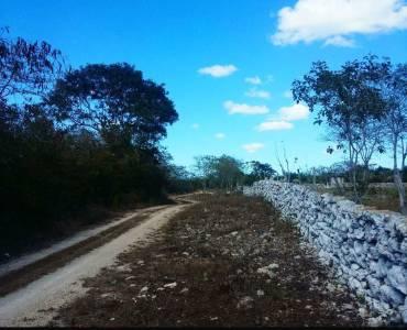 Yaxkukul,Yucatán,Mexico,Lotes-Terrenos,4589