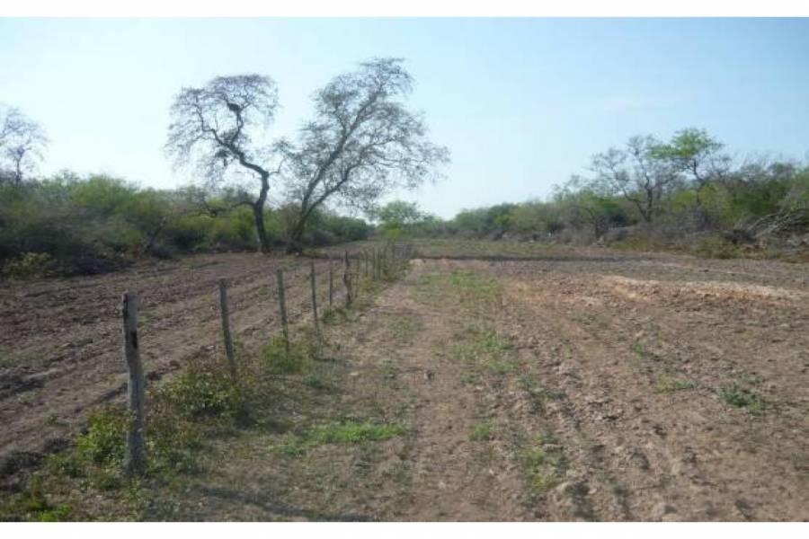 Tres Isletas,Chaco,Campos,Ruta 9,1498