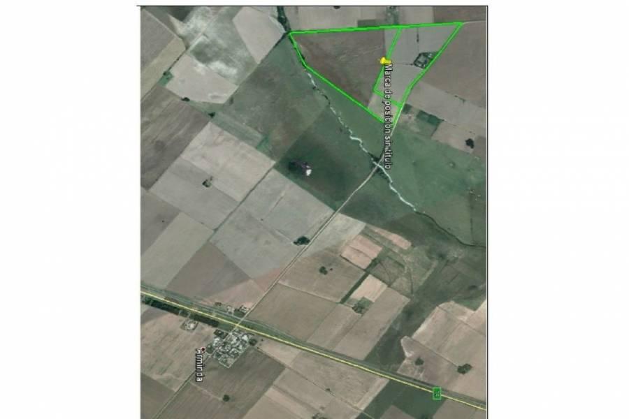 Arminda,Santa Fe,Campos,Ruta 26s,1646