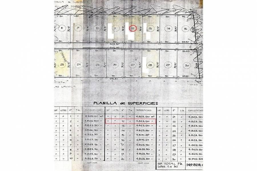 Oliveros,Santa Fe,Lotes,Ruta 11,1649