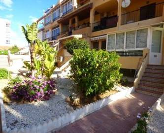 Torrevieja,Alicante,España,1 Dormitorio Bedrooms,1 BañoBathrooms,Pisos,10219