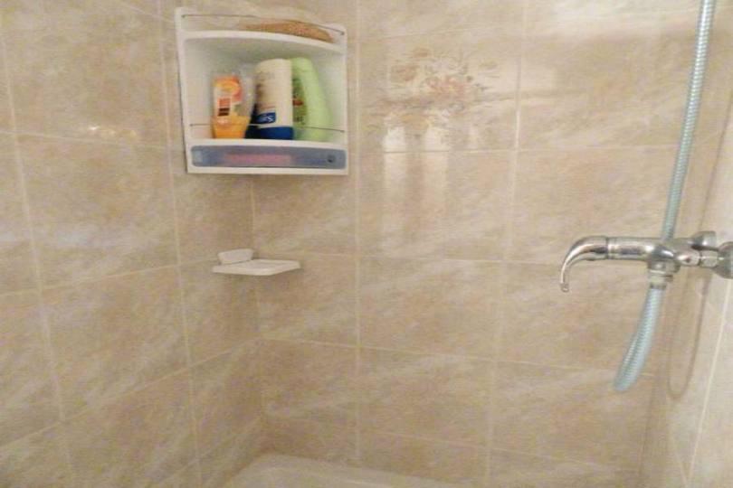 Torrevieja,Alicante,España,1 Dormitorio Bedrooms,1 BañoBathrooms,Pisos,10263