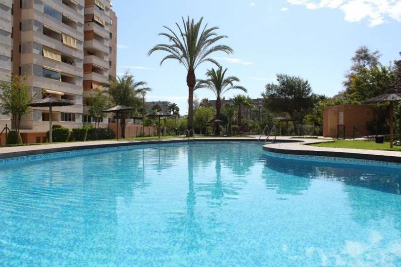 Alicante,Alicante,España,3 Bedrooms Bedrooms,2 BathroomsBathrooms,Pisos,11849