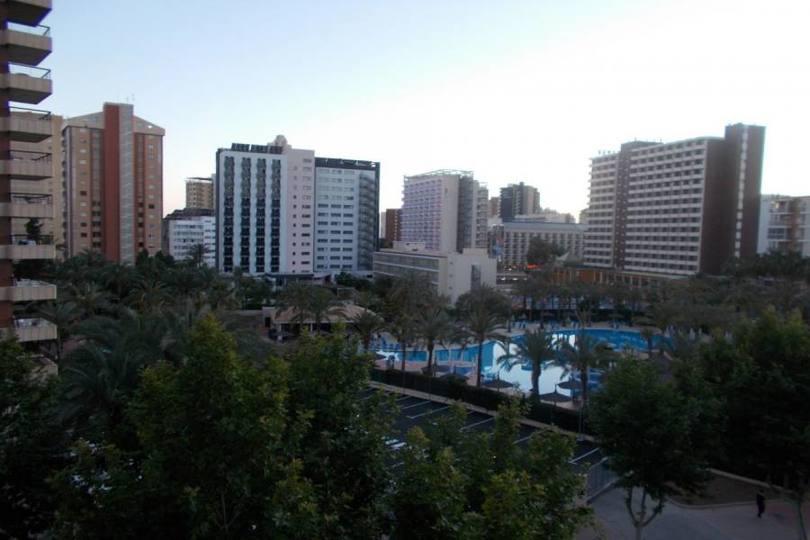 Benidorm,Alicante,España,2 Bedrooms Bedrooms,1 BañoBathrooms,Pisos,11928