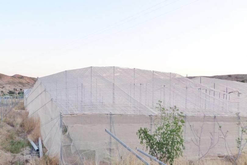 Mutxamel,Alicante,España,1 Dormitorio Bedrooms,2 BathroomsBathrooms,Pisos,12014