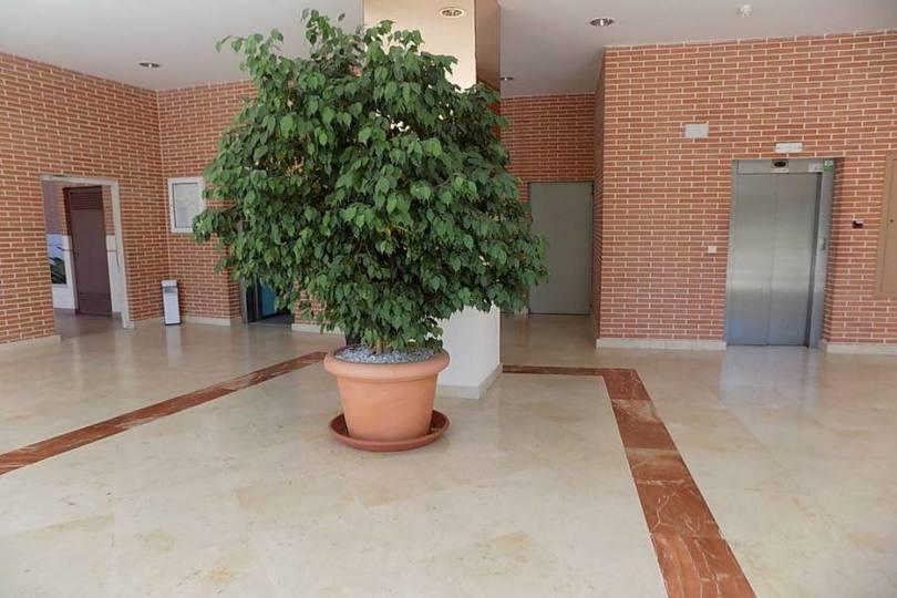 Benidorm,Alicante,España,3 Bedrooms Bedrooms,2 BathroomsBathrooms,Pisos,12120