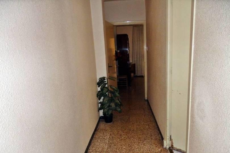 Elche,Alicante,España,4 Bedrooms Bedrooms,1 BañoBathrooms,Pisos,12280