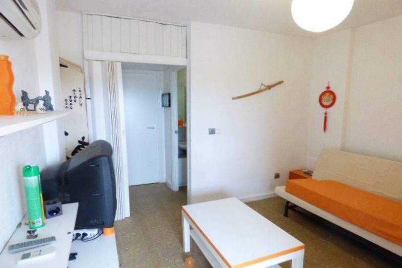Torrevieja,Alicante,España,1 BañoBathrooms,Pisos,12392