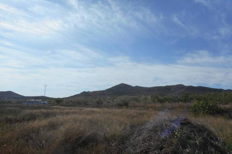 Hondón de los Frailes,Alicante,España,3 Habitaciones Habitaciones,2 BañosBaños,Fincas-Villas,2117