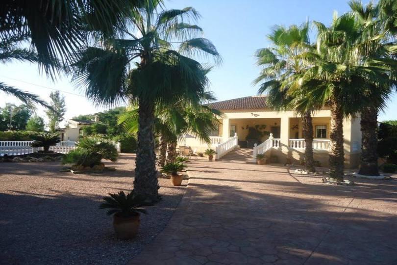 Catral,Alicante,España,4 Habitaciones Habitaciones,4 BañosBaños,Fincas-Villas,2180