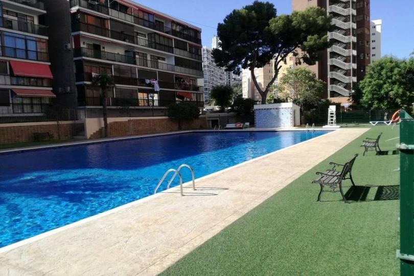 Benidorm,Alicante,España,1 Dormitorio Bedrooms,1 BañoBathrooms,Pisos,14626