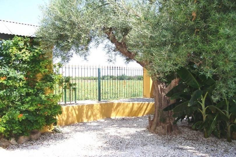Redován,Alicante,España,4 Habitaciones Habitaciones,2 BañosBaños,Fincas-Villas,2215