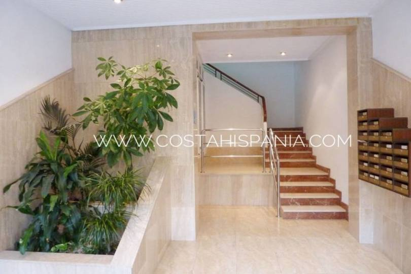 Alicante,Alicante,España,2 BathroomsBathrooms,Local comercial,16501