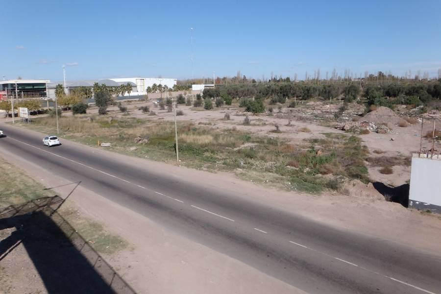 Rodeo de la Cruz,Mendoza,Lotes,25 de mayo,1137