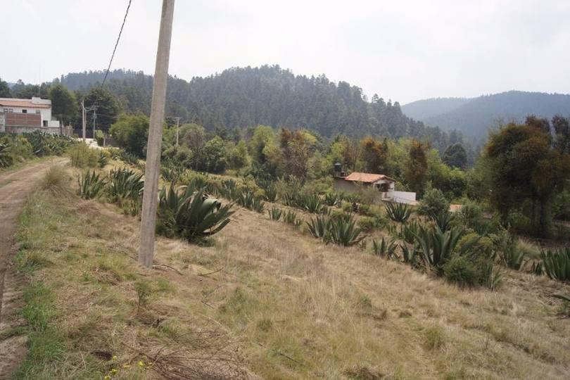 Lerma,Estado de Mexico,México,Lotes-Terrenos,2468