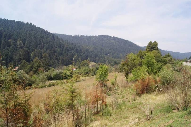 Lerma,Estado de Mexico,México,Lotes-Terrenos,2472