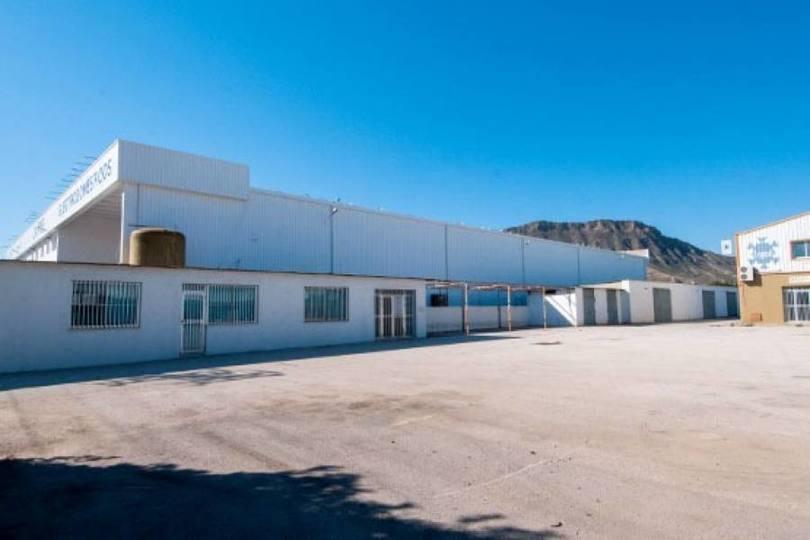 Alicante,Alicante,España,Nave industrial,19006