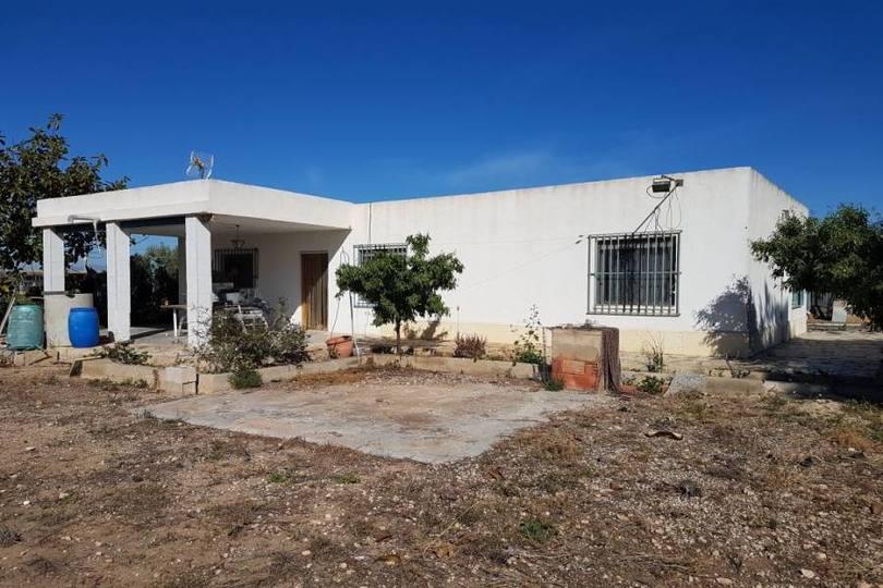 Elche,Alicante,España,12 Bedrooms Bedrooms,4 BathroomsBathrooms,Chalets,19102
