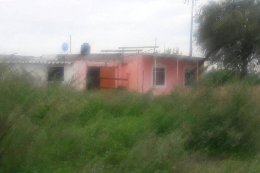 Meoqui,Chihuahua,México,Campos,2899