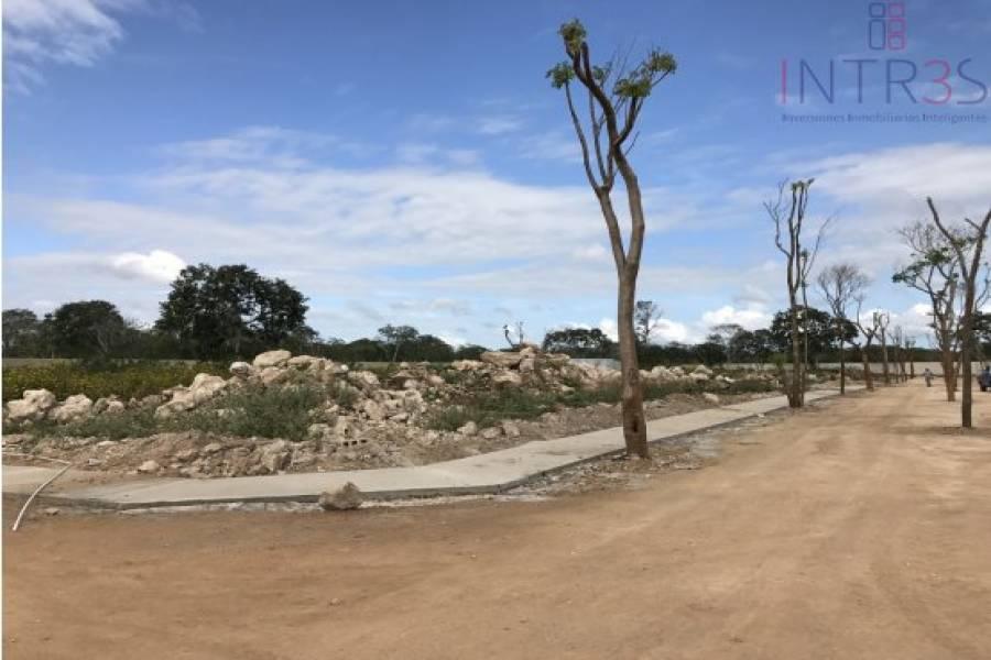 Mérida,Yucatán,México,Lotes-Terrenos,villareal,2946