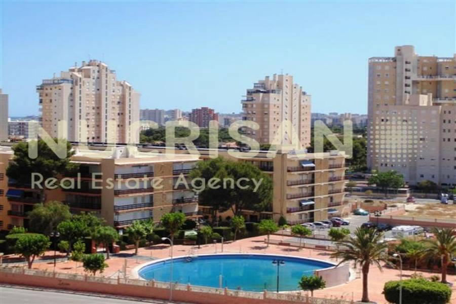 el Campello,Alicante,España,2 Bedrooms Bedrooms,2 BathroomsBathrooms,Apartamentos,21618