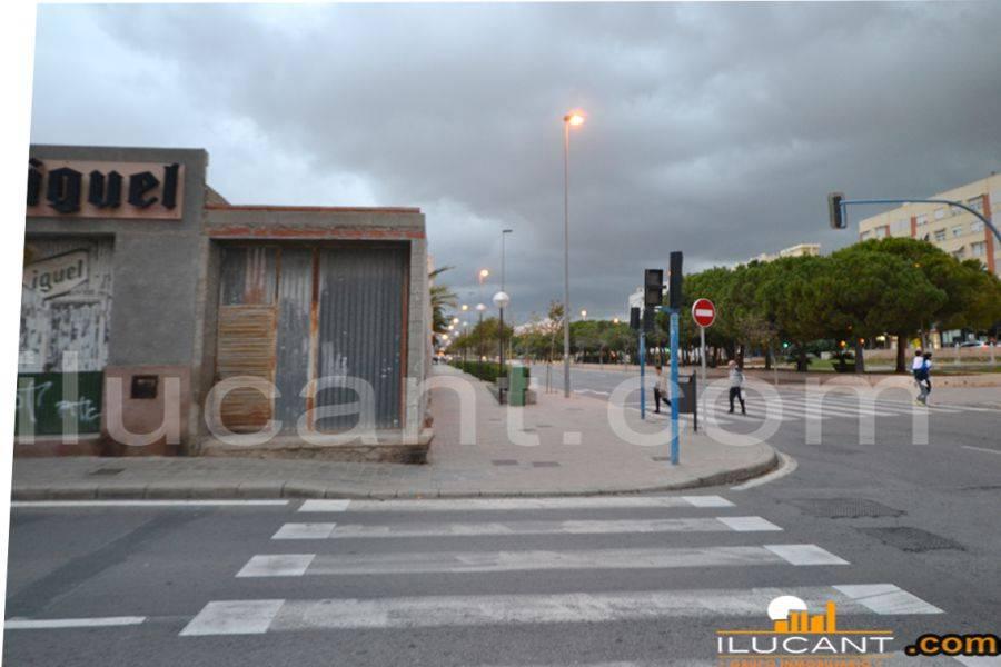 Alicante,Alicante,España,Lotes-Terrenos,21796