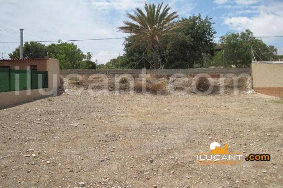 San Juan,Alicante,España,Lotes-Terrenos,21805