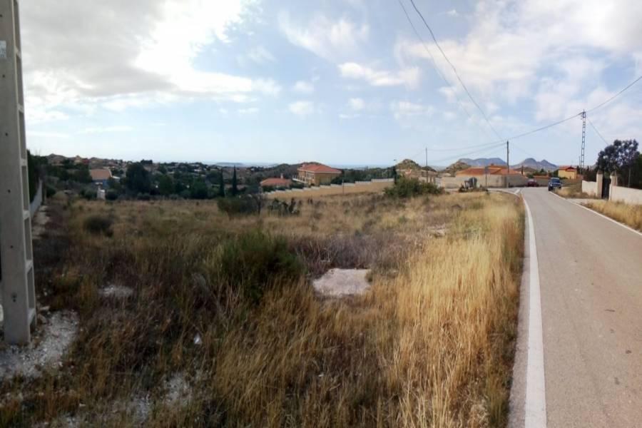 Alicante,Alicante,España,Lotes-Terrenos,22287