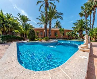 Torrevieja,Alicante,España,5 Bedrooms Bedrooms,3 BathroomsBathrooms,Casas,22342