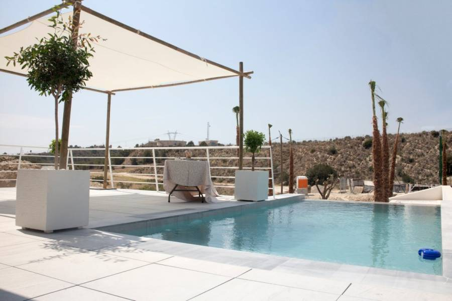 San Miguel de Salinas,Alicante,España,3 Bedrooms Bedrooms,3 BathroomsBathrooms,Casas,22414