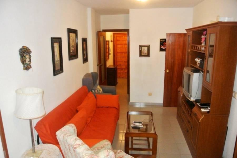 Torrevieja,Alicante,España,1 Dormitorio Bedrooms,1 BañoBathrooms,Apartamentos,22466