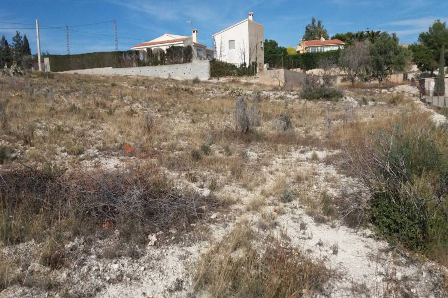 San Vicente del Raspeig,Alicante,España,Lotes-Terrenos,22498