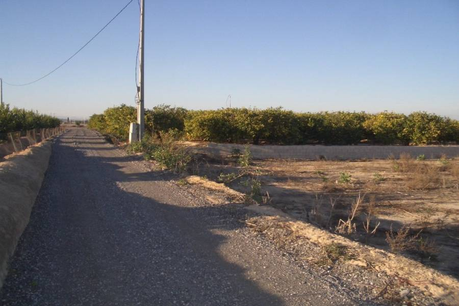 San Miguel de Salinas,Alicante,España,Lotes-Terrenos,22538