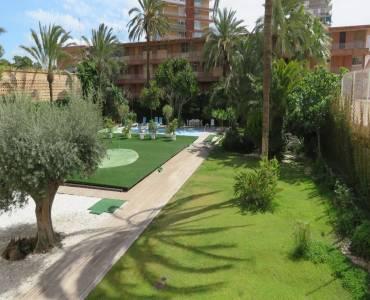Alicante,Alicante,España,2 Bedrooms Bedrooms,1 BañoBathrooms,Planta baja,24161