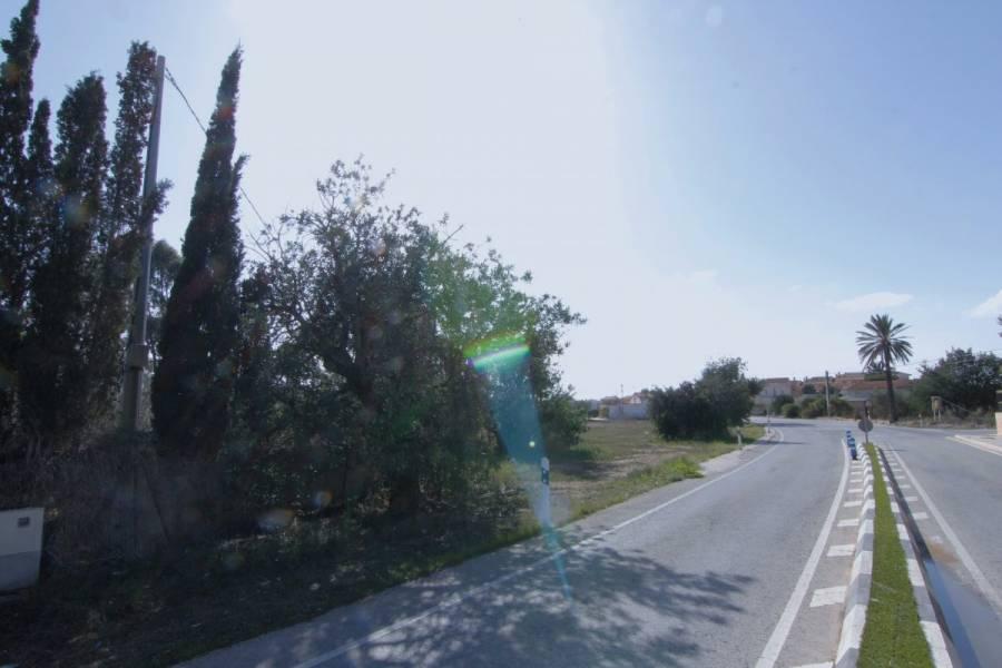 Elche,Alicante,España,Lotes-Terrenos,24190