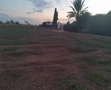 Elche,Alicante,España,Lotes-Terrenos,24202