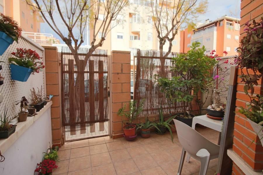 Elche,Alicante,España,3 Bedrooms Bedrooms,2 BathroomsBathrooms,Bungalow,24208