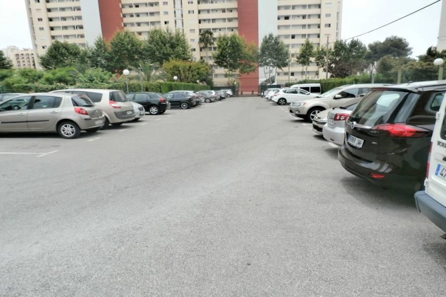 Benidorm,Alicante,España,2 Bedrooms Bedrooms,1 BañoBathrooms,Apartamentos,24218