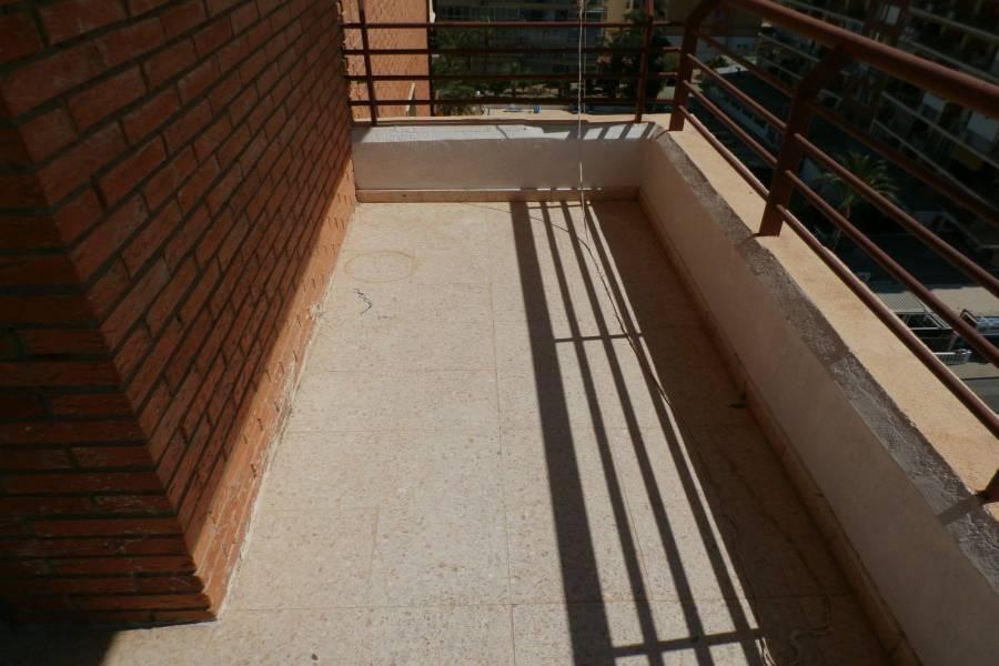 Benidorm,Alicante,España,1 Dormitorio Bedrooms,1 BañoBathrooms,Apartamentos,24223