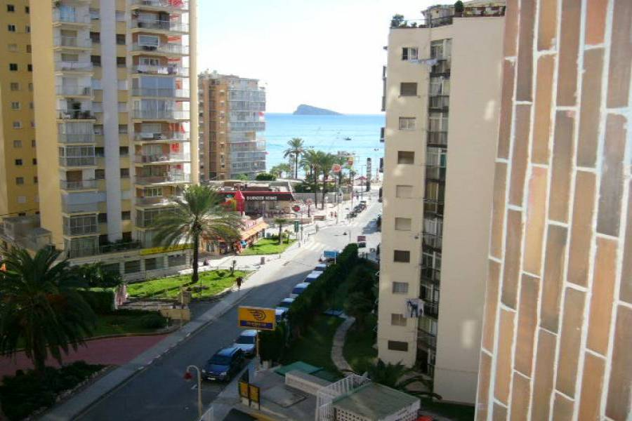 Benidorm,Alicante,España,1 Dormitorio Bedrooms,1 BañoBathrooms,Apartamentos,24224