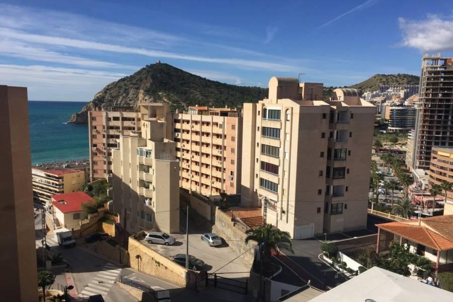Benidorm,Alicante,España,2 Bedrooms Bedrooms,1 BañoBathrooms,Apartamentos,24227